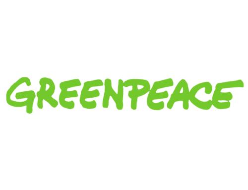 Organisational director Greenpeace Nederland